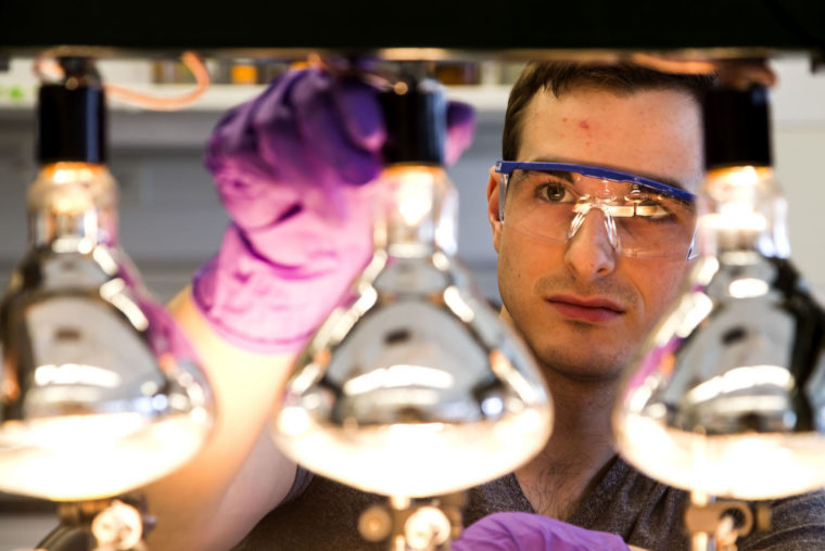 A photograph of a Chemical Engineering researcher creating a bacterial biofilm.