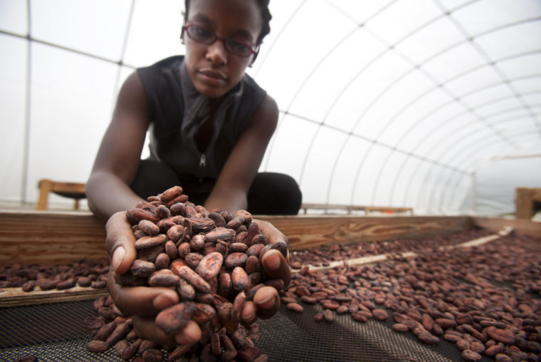 A photograph of Corinne Joachim-Sanon working in Haiti.
