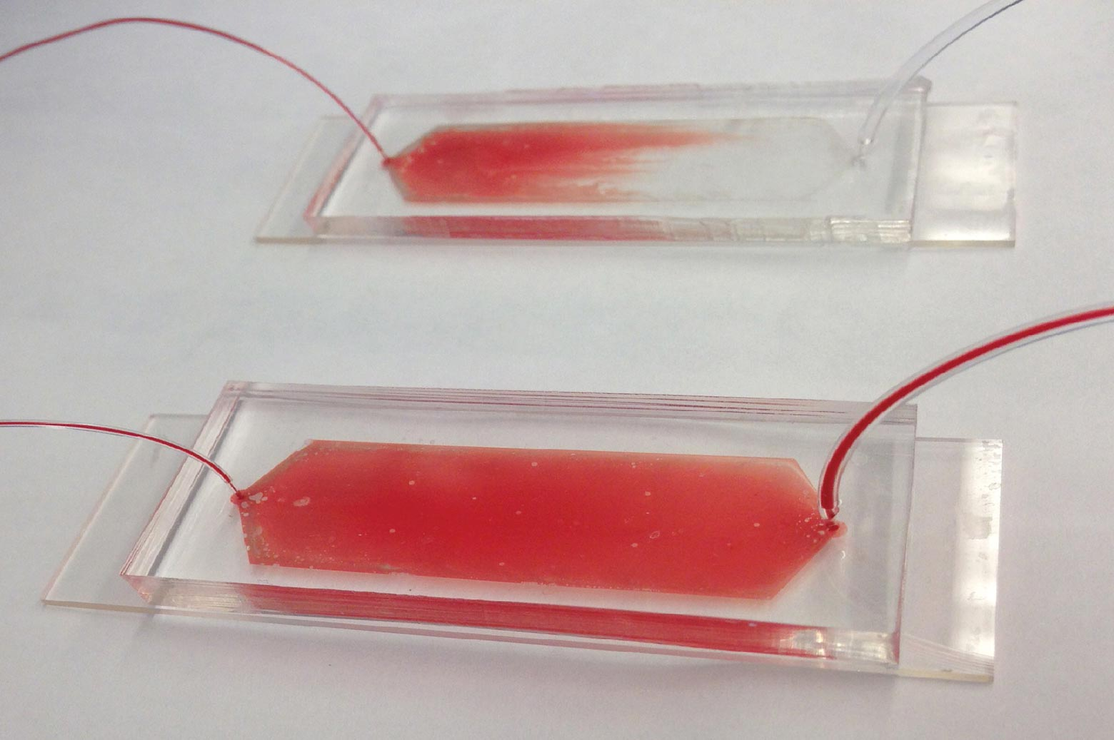 The device captures cancer cells from a blood sample