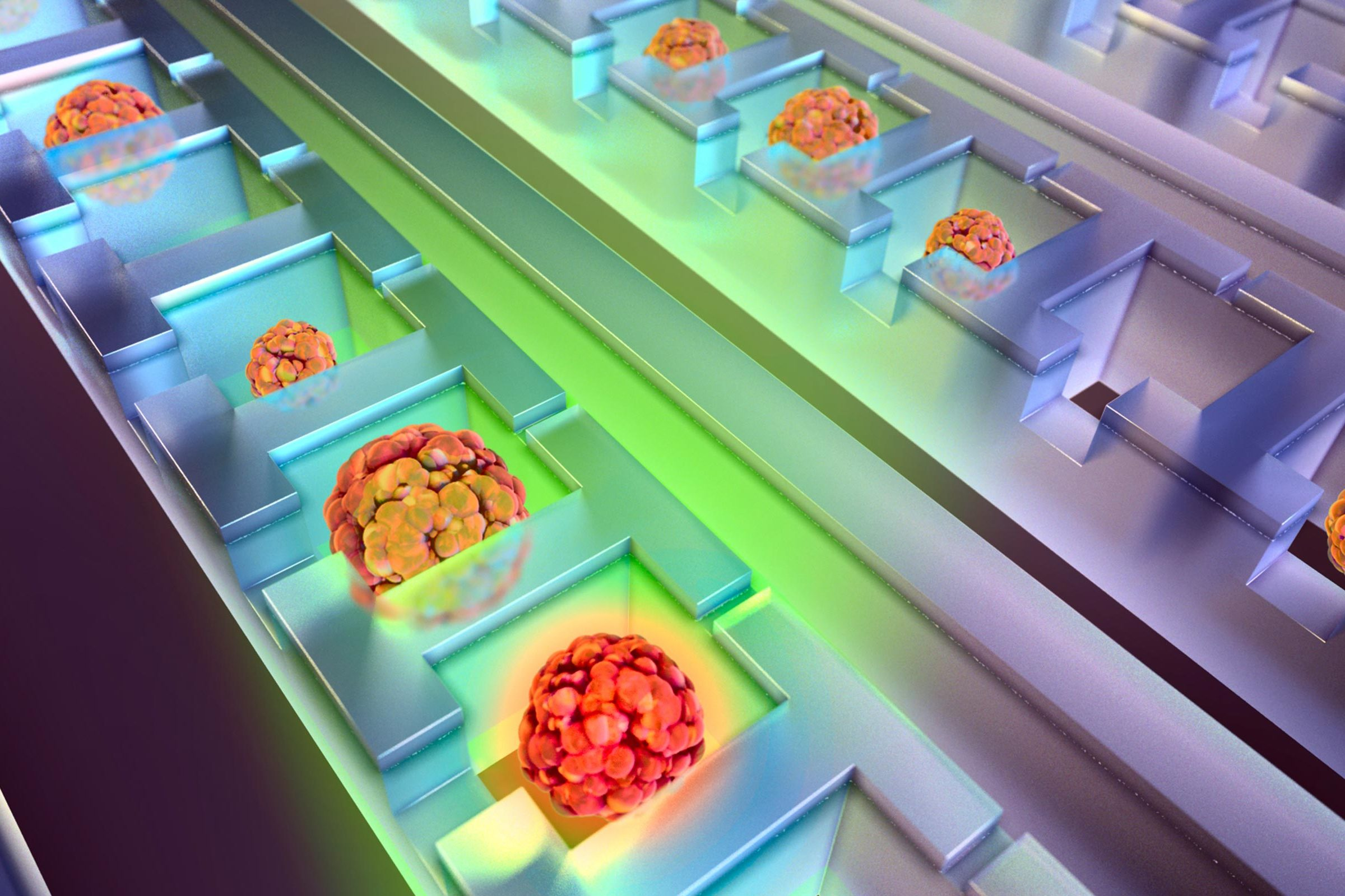 Illustration of cancer cell colonies growing in the chip