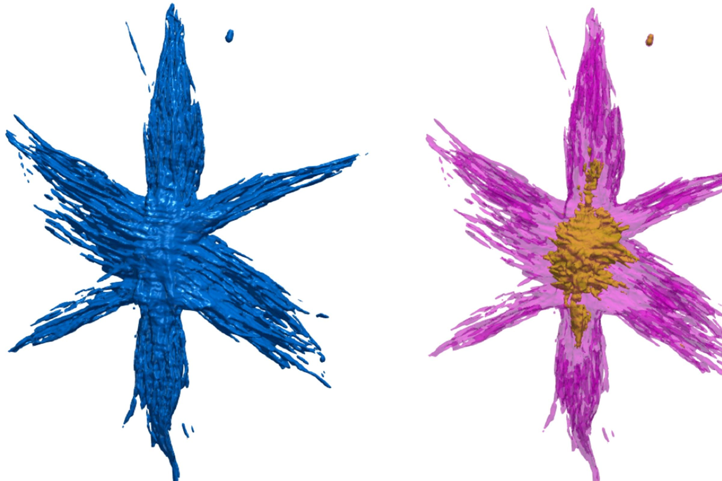 This image from Tomviz 1.0 depicts a hyperbranched particle with complex nanostructure.