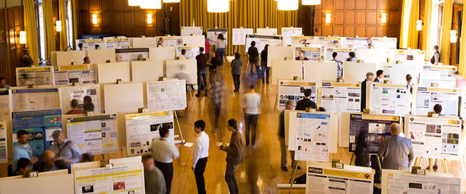 Various researches present their projects during a poster session.