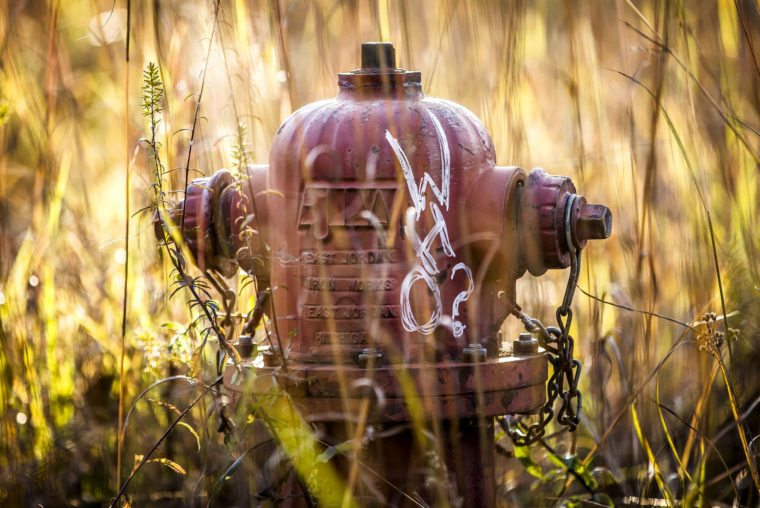 A photograph of a fire hydrant in a field in Ann Arbor, MI