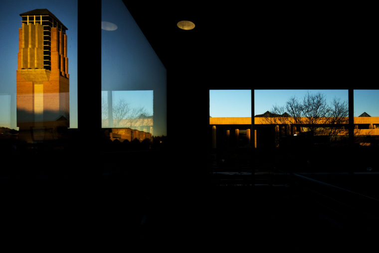 A photo of the Eda U. Gerstacker Grove at dusk.