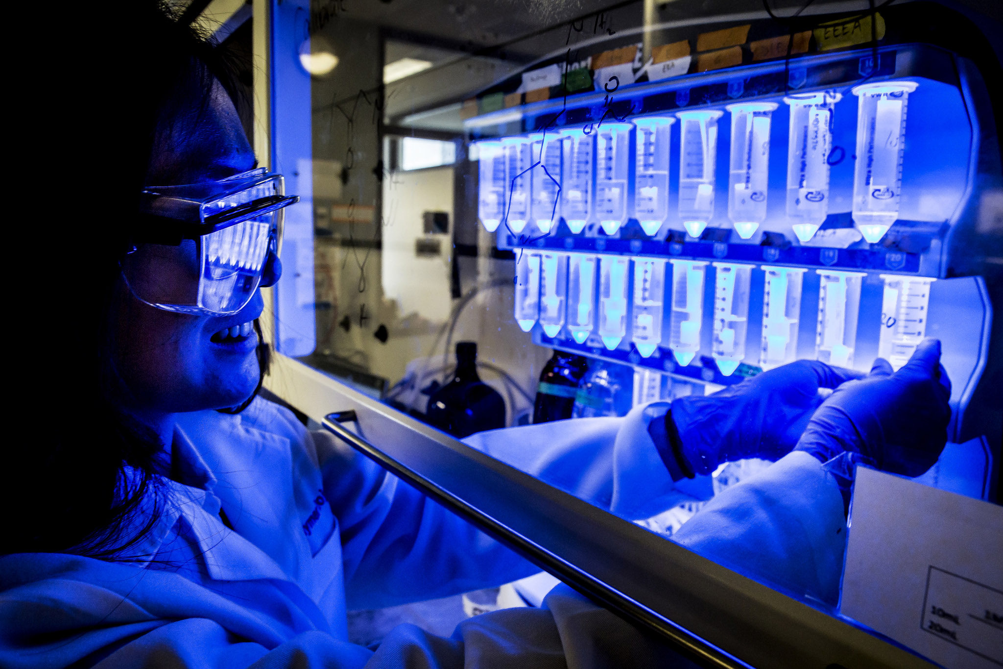 A photograph of Tao Wei, ChE PhD Student, synthesizing proteins in the lab.