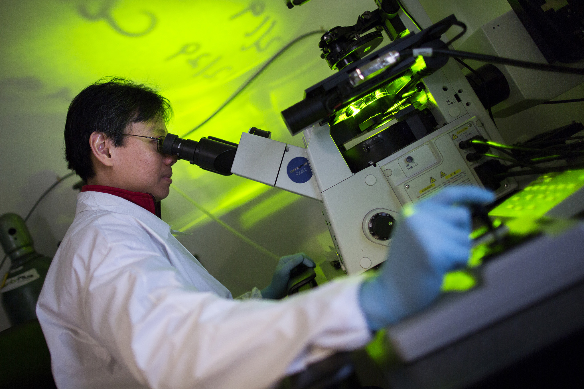 A photograph of Yen Kong, BME Research fellow, working in a laboratory.