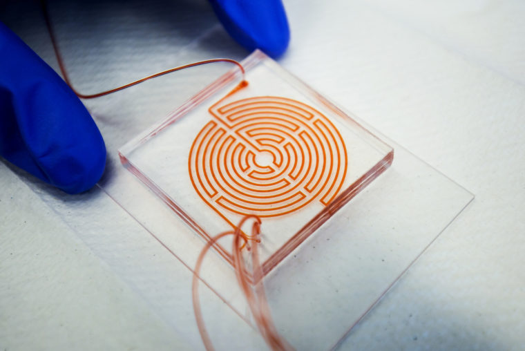 A photograph of a microfluidic chip.
