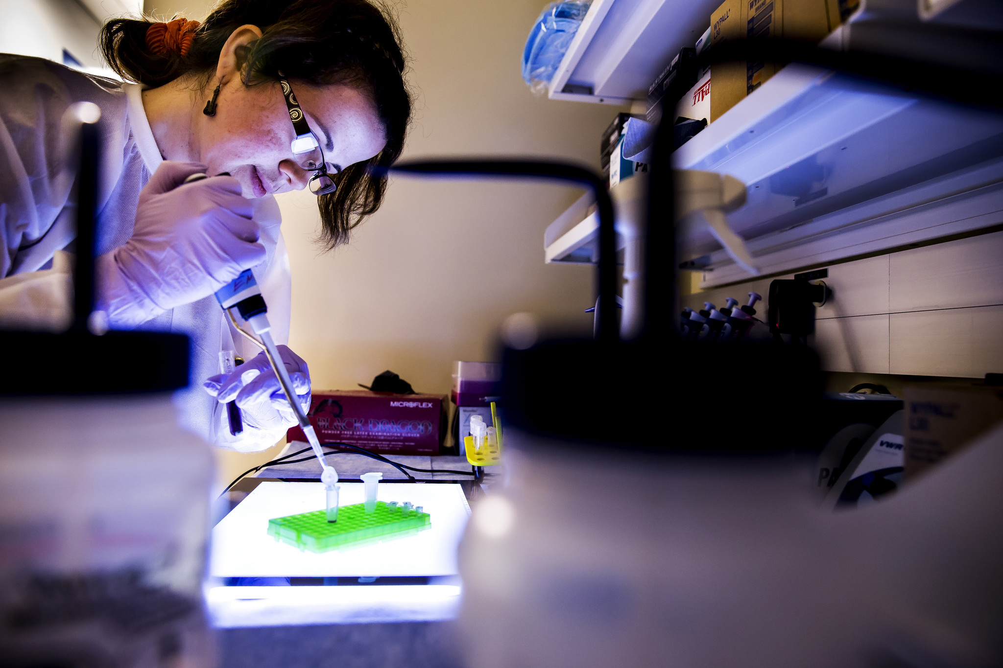 A researcher in lab constructing golden nanorods.