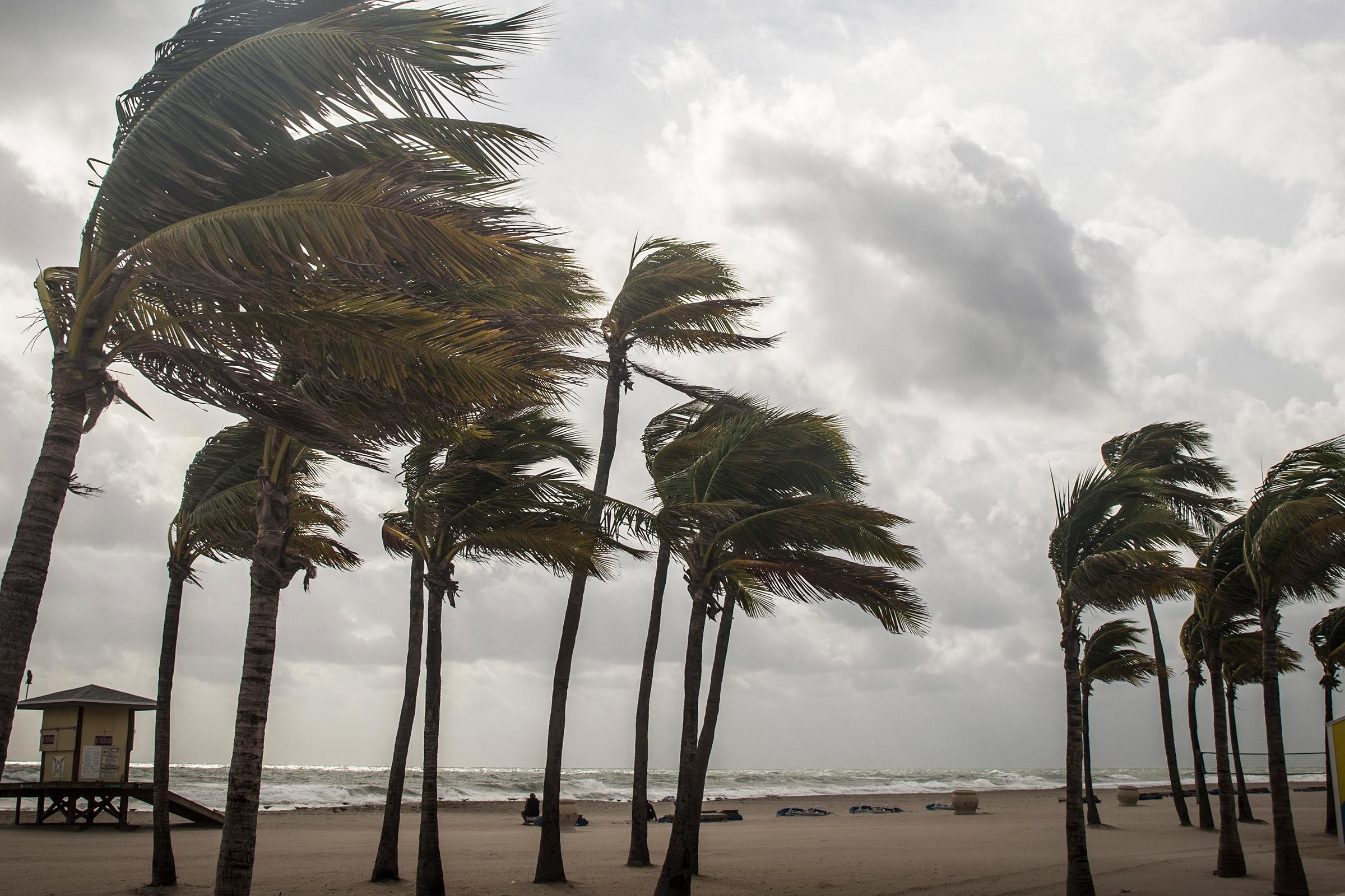 Hurricane Irma: Engineering researchers involved in forecasts and more