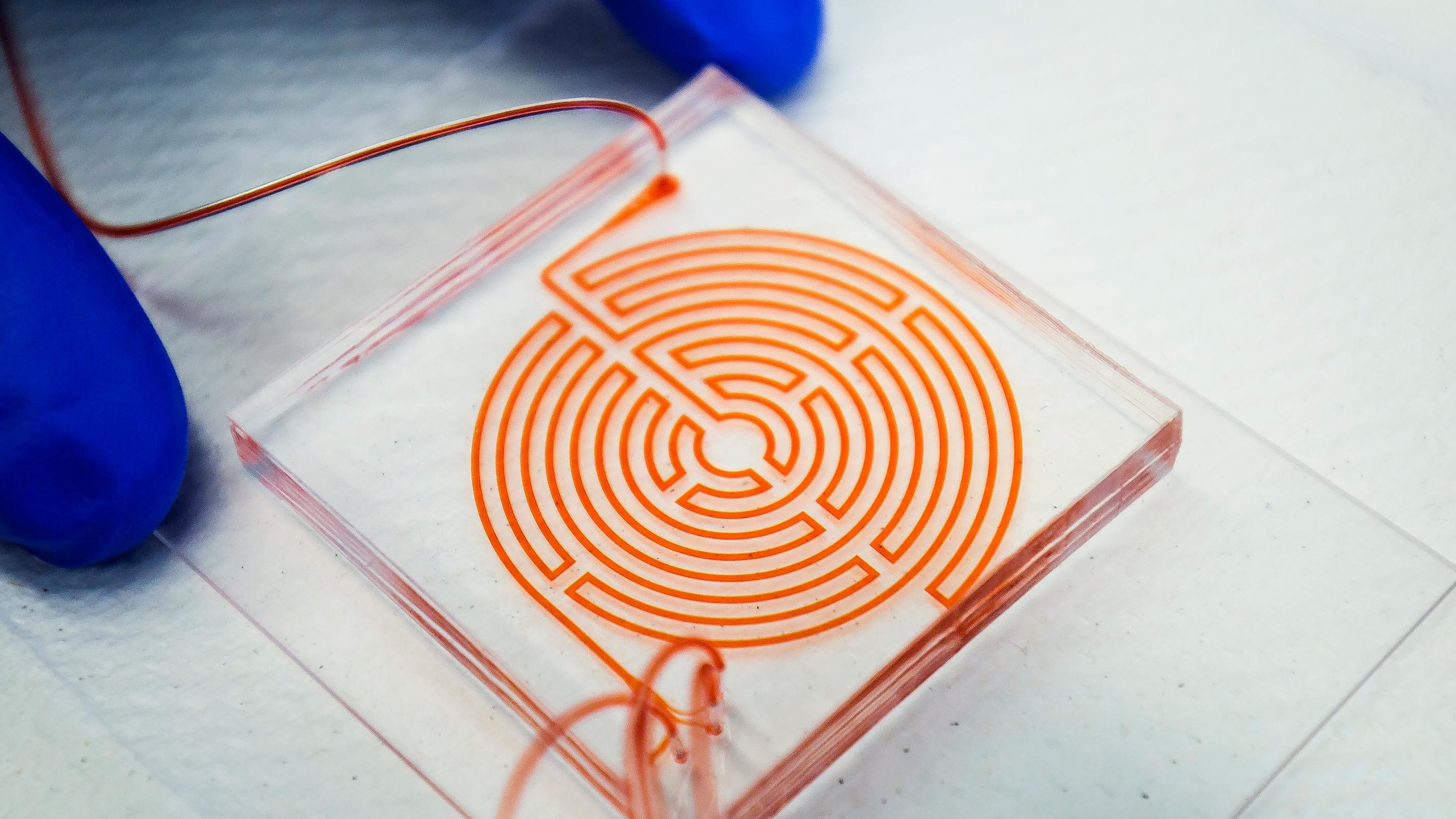 """""""Labyrinth"""" chip could help monitor aggressive cancer stem cells"""