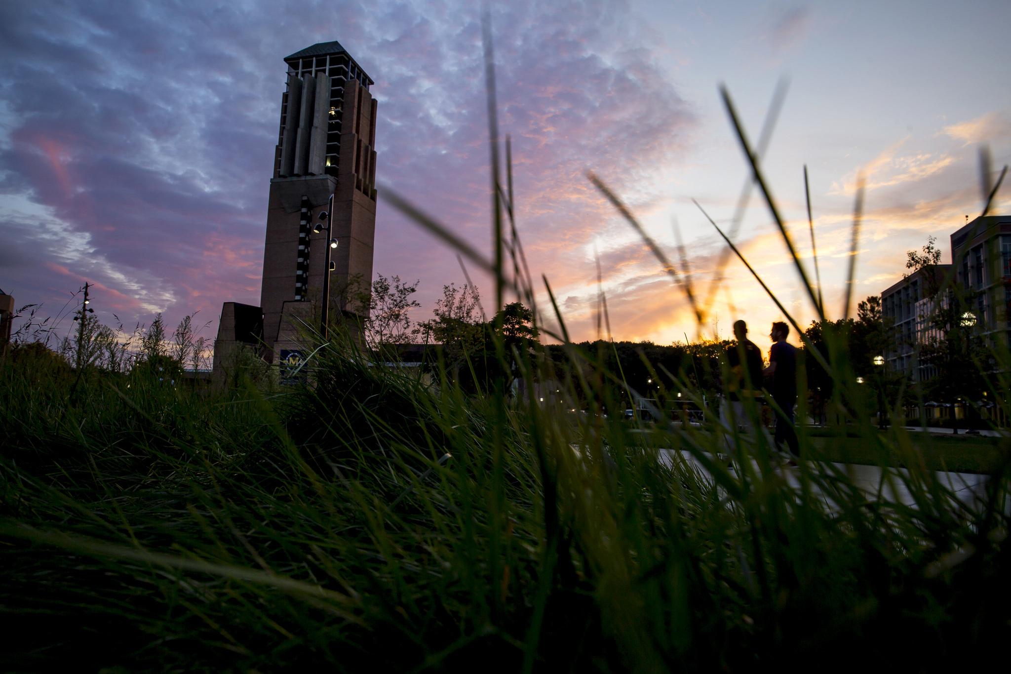 A photograph of the Eda U. Gerstacker Grove at sunset.
