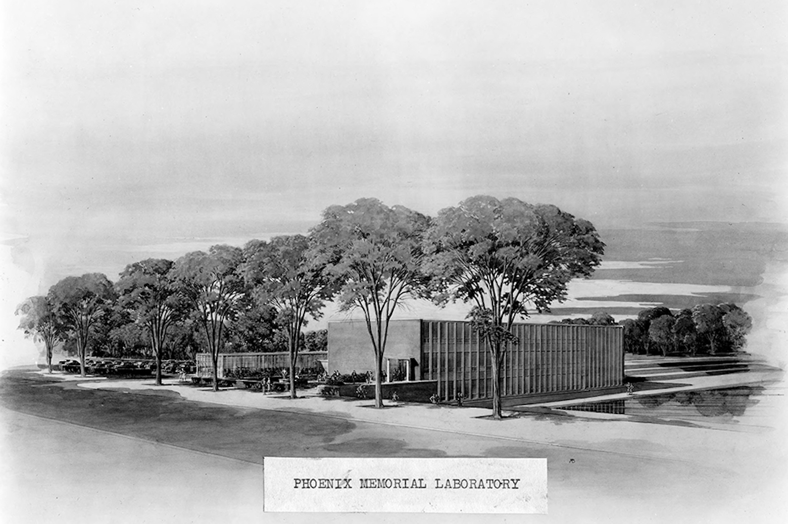 Architect's drawing of Phoenix Memorial Laboratory