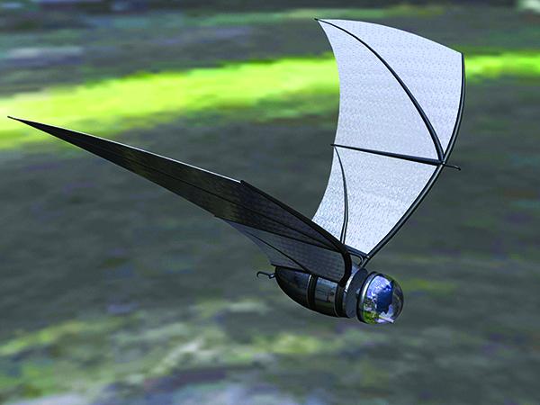 COMBAT bat