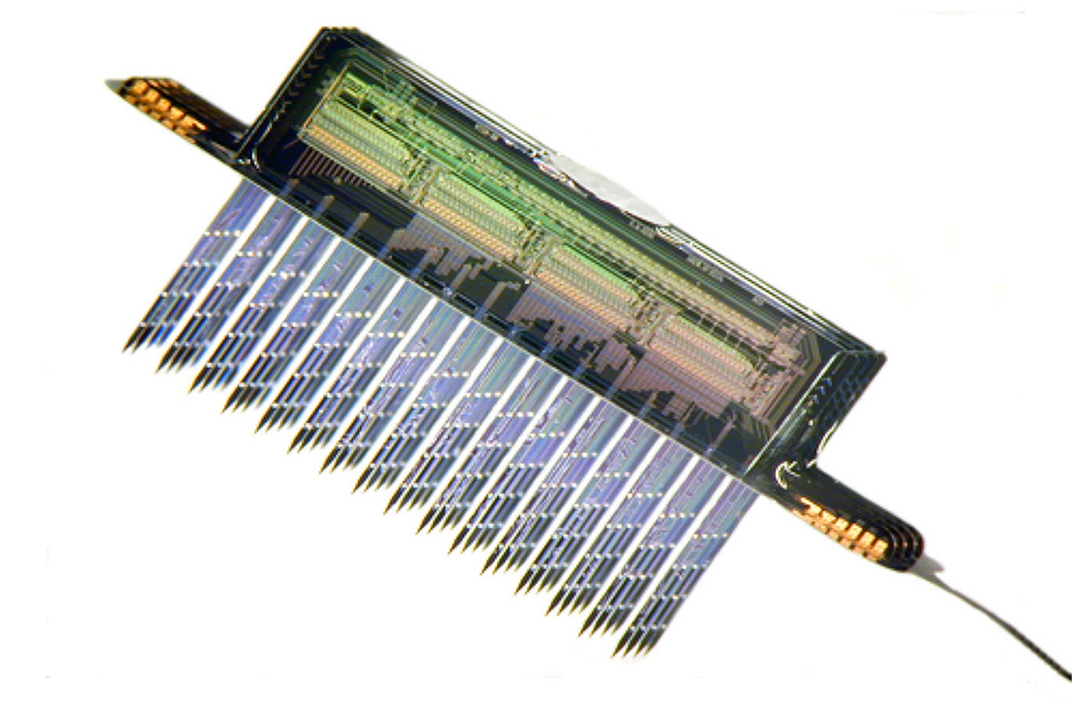 close-up of 256-site four-probe neuroelectric interface