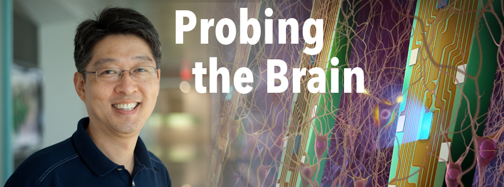 probing the brain