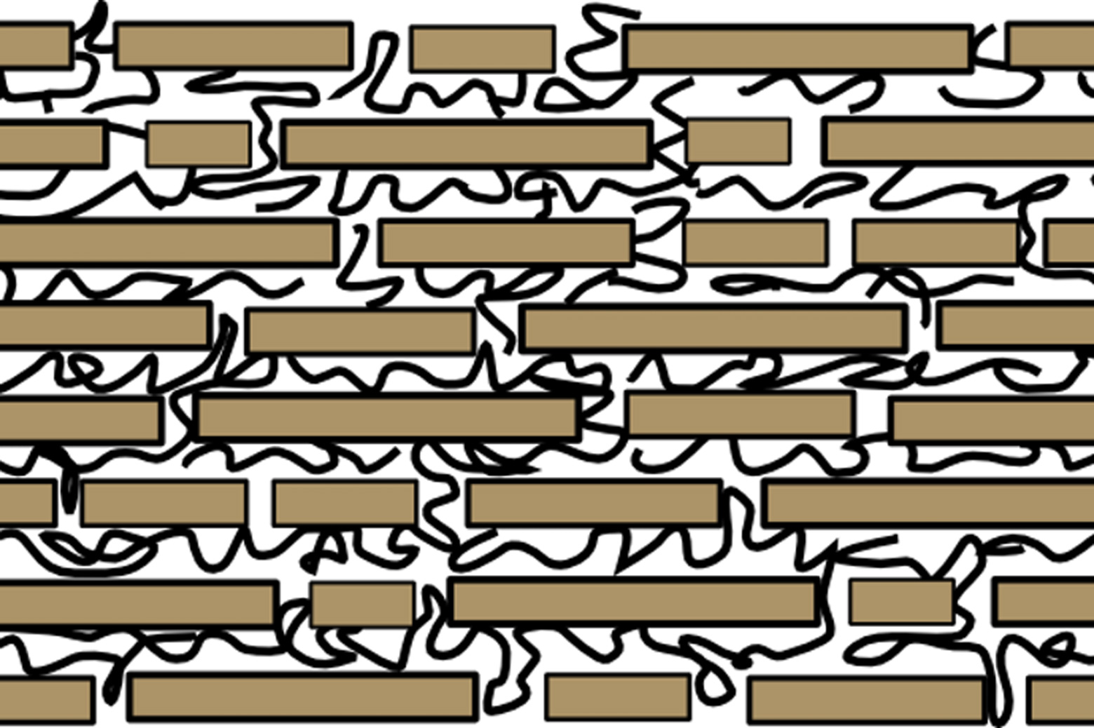 Schematic of the microscopic structure of nacre