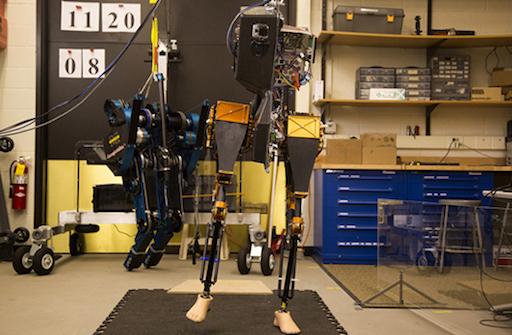 MARLO robot