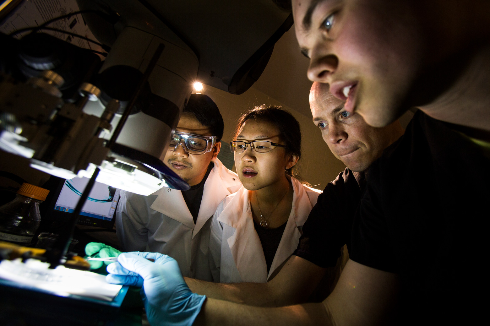 Tim Bruns, Assistant Professor of Biomedical Engineering at Michigan Engineering and his students observe the buccal mass of an aplysia Californica (sea slug) moving. Photo by Photo by Marcin Szczepanski
