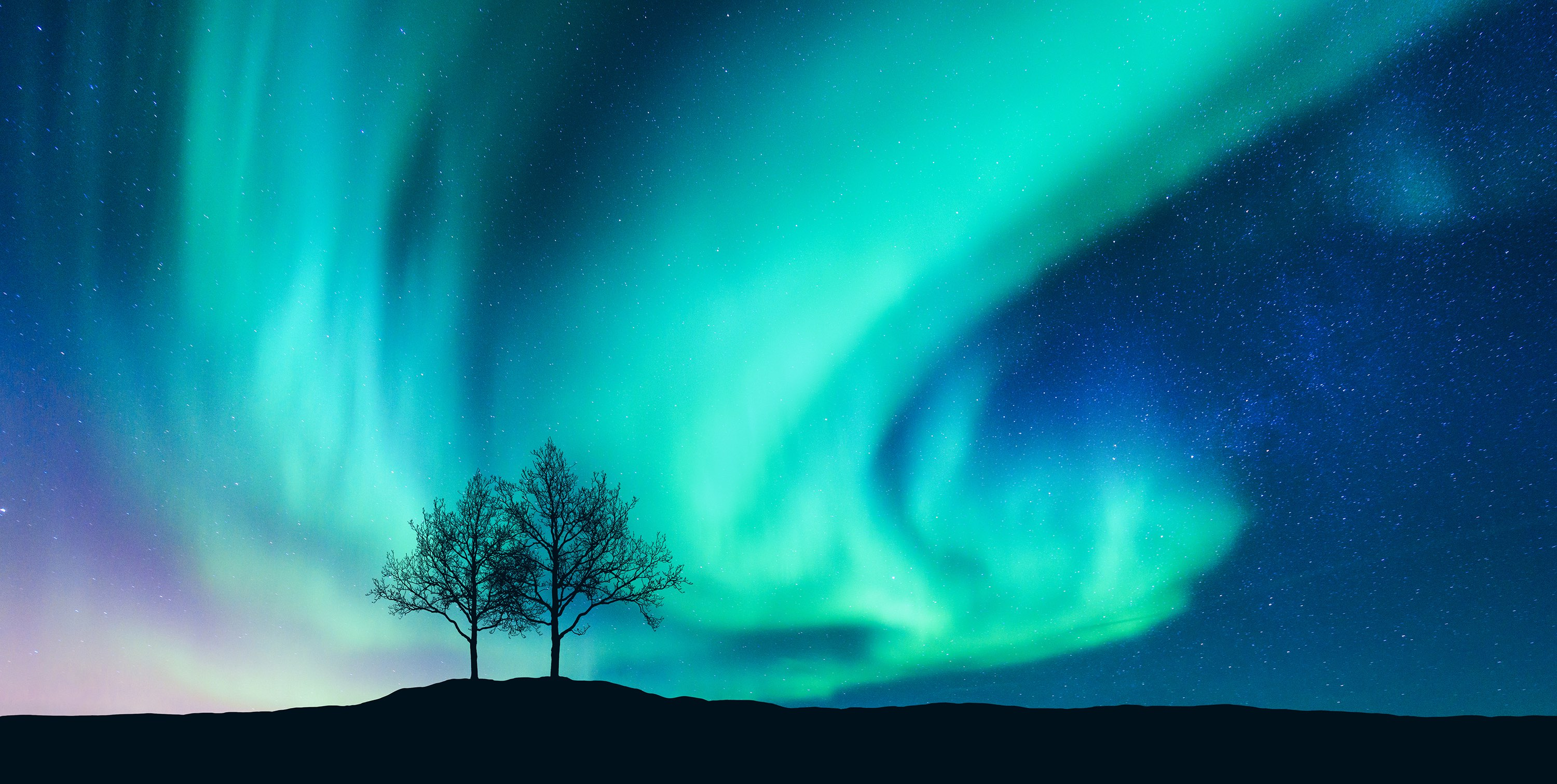 Aurora borealis (Northern Lights).