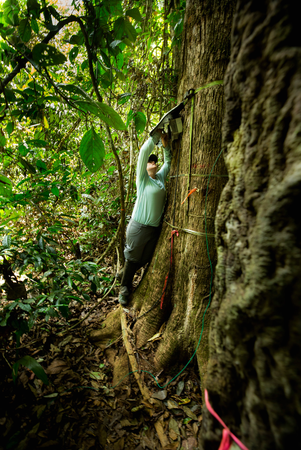 Grad student Agee leans against a tree in the Amazon