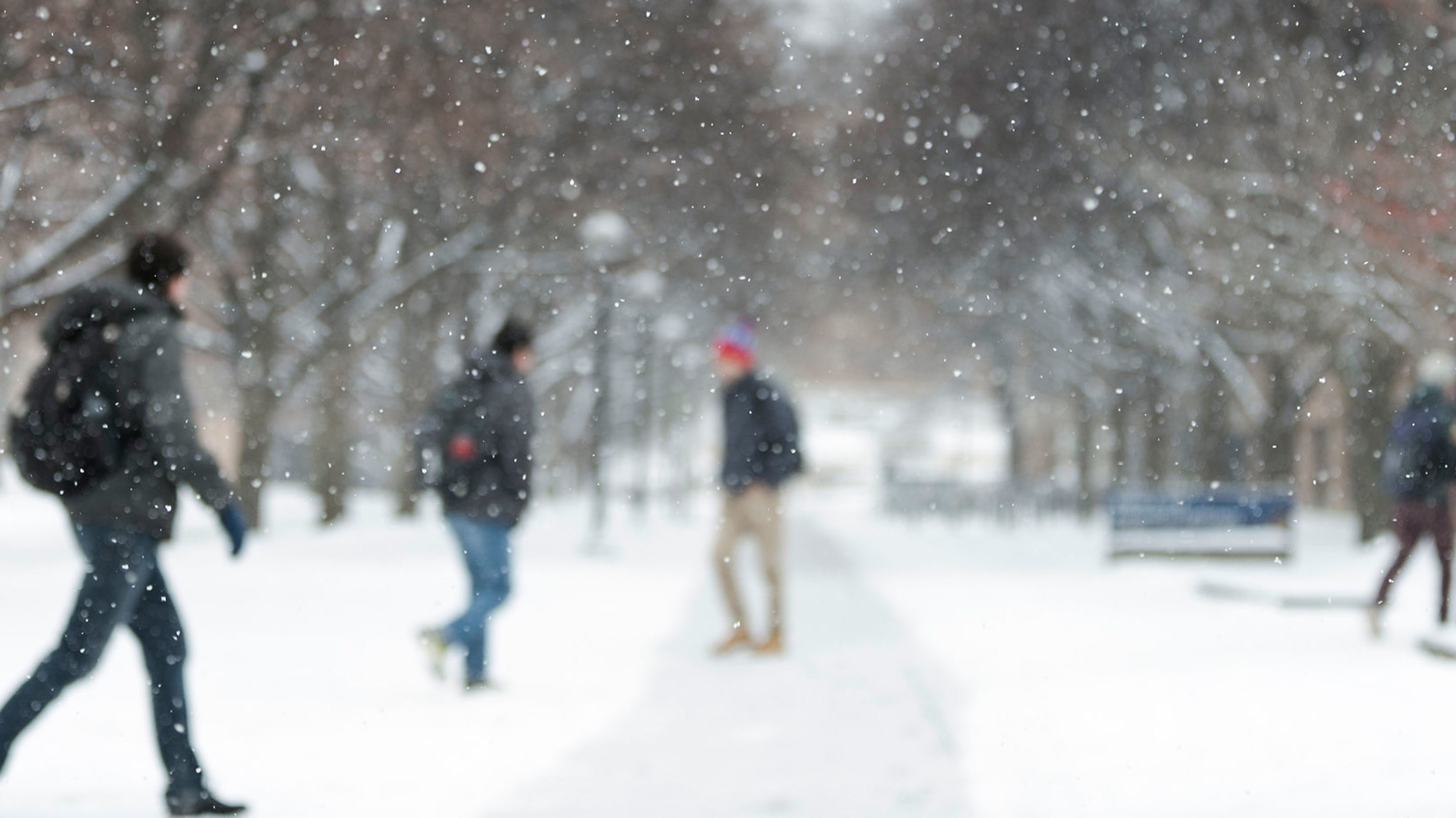 Students walking to class amidst falling snow