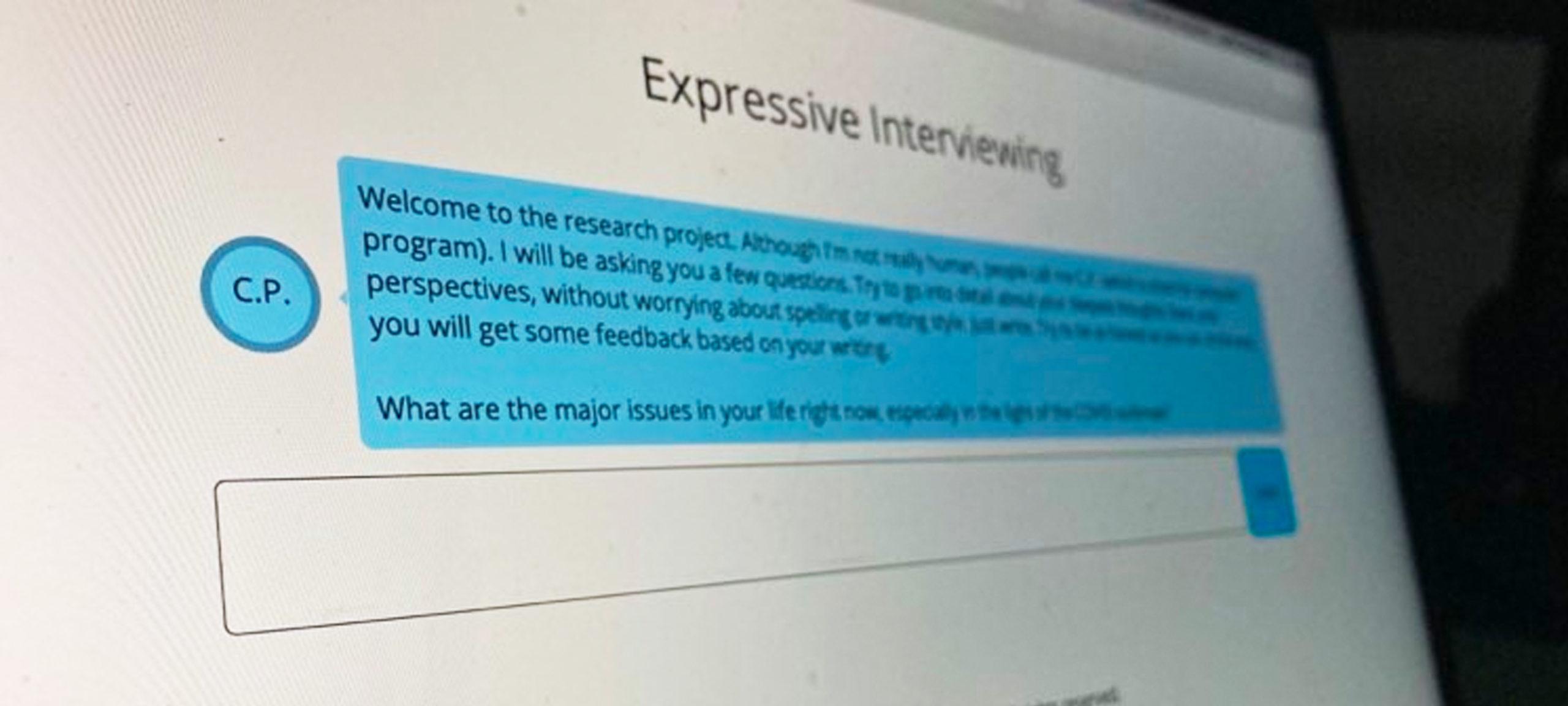 Screenshot of the interviewer