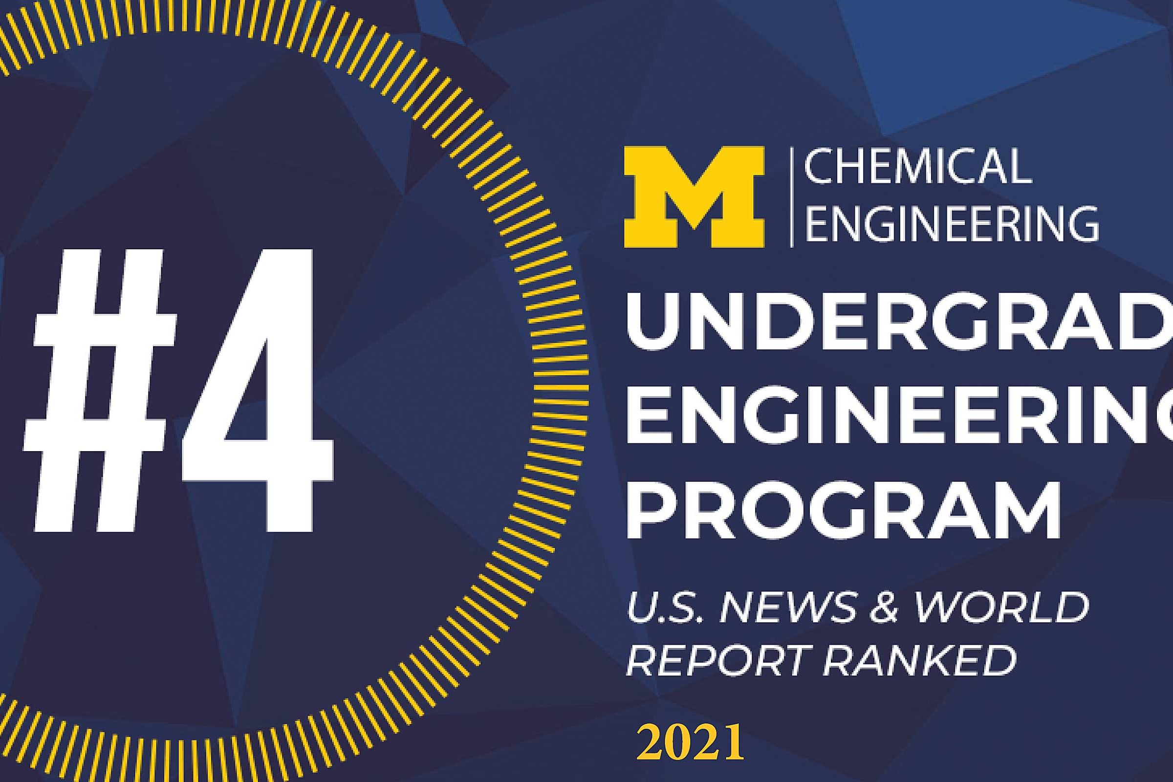 Chemical Engineering Undergraduate #4