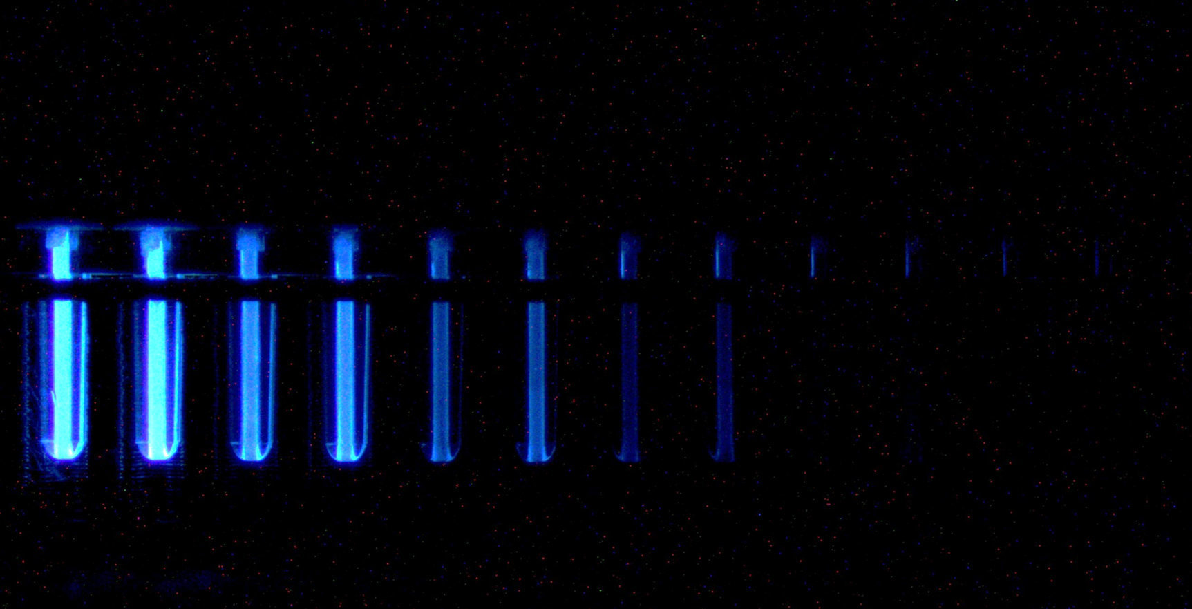 the plasma test
