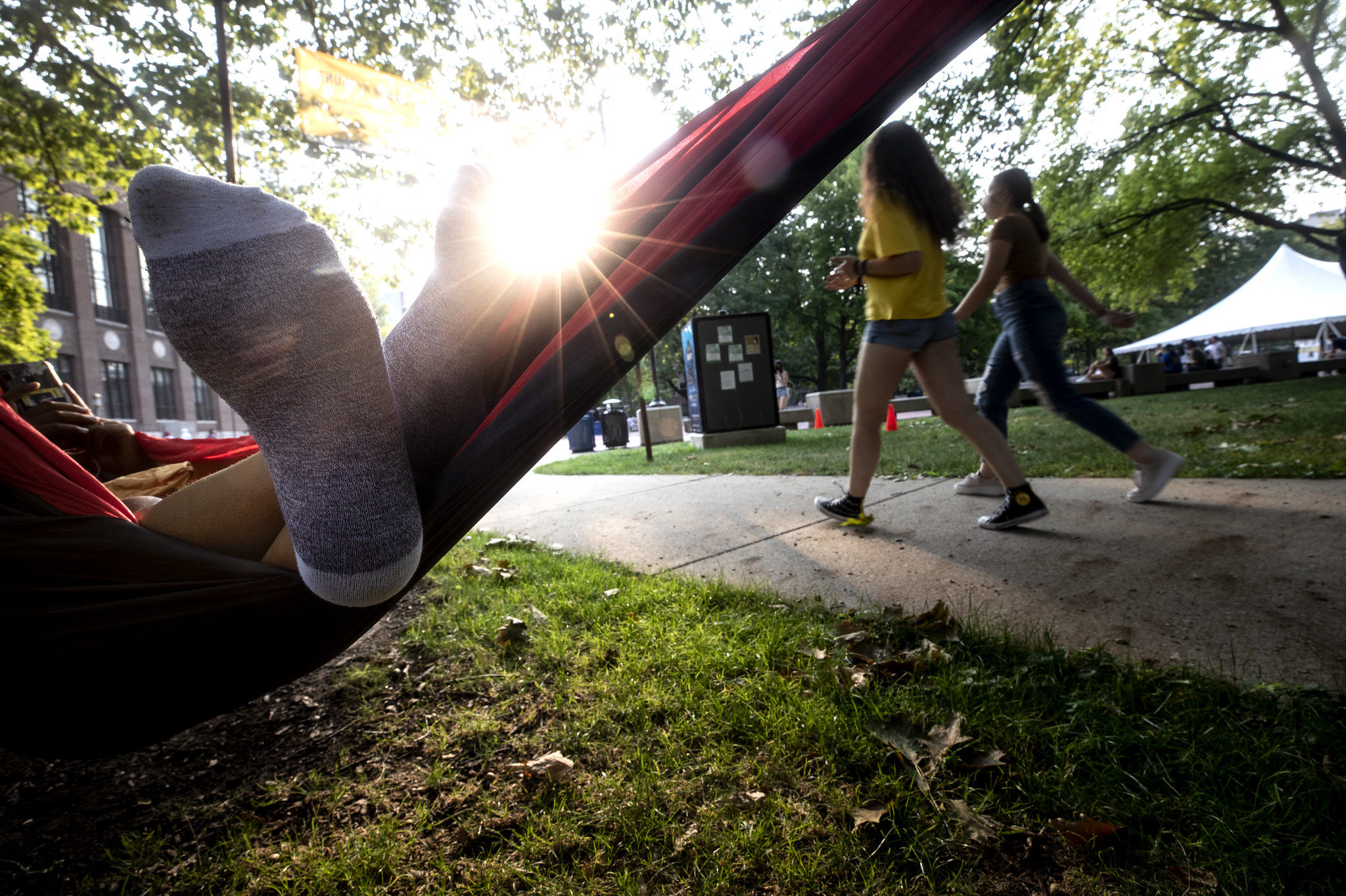 A photograph of a student in a hammock.