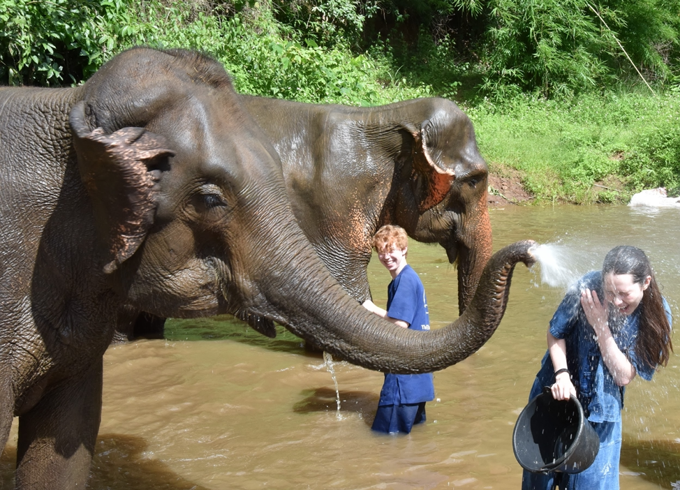 cute elephant sprays girl in the face