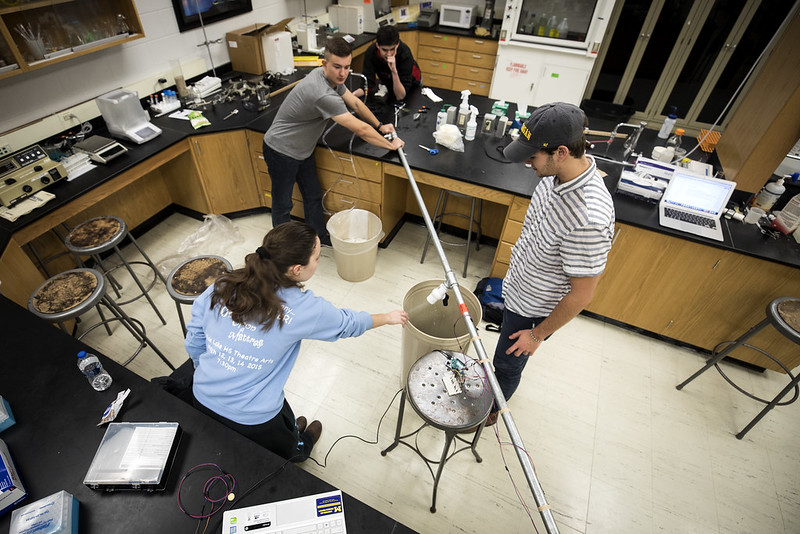 students work together in a lab class