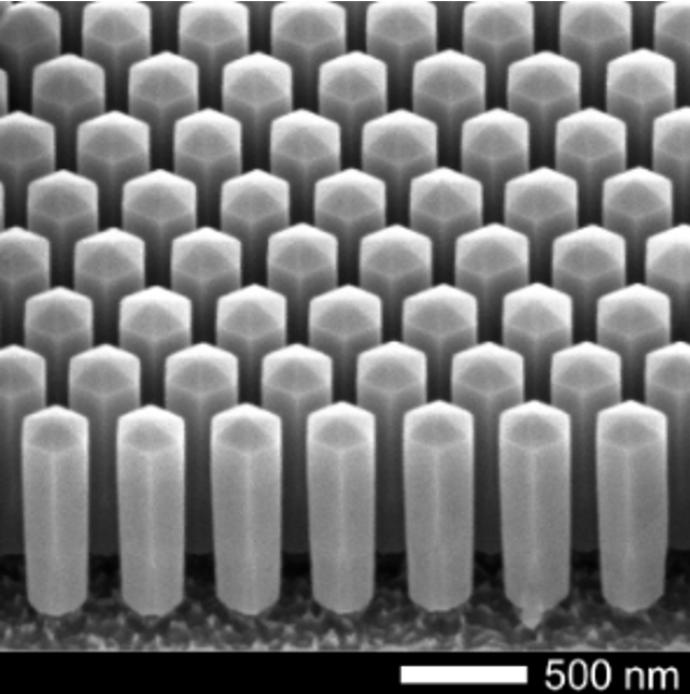 An array of gallium indium nitride nanowires, seen through an electron microscope.