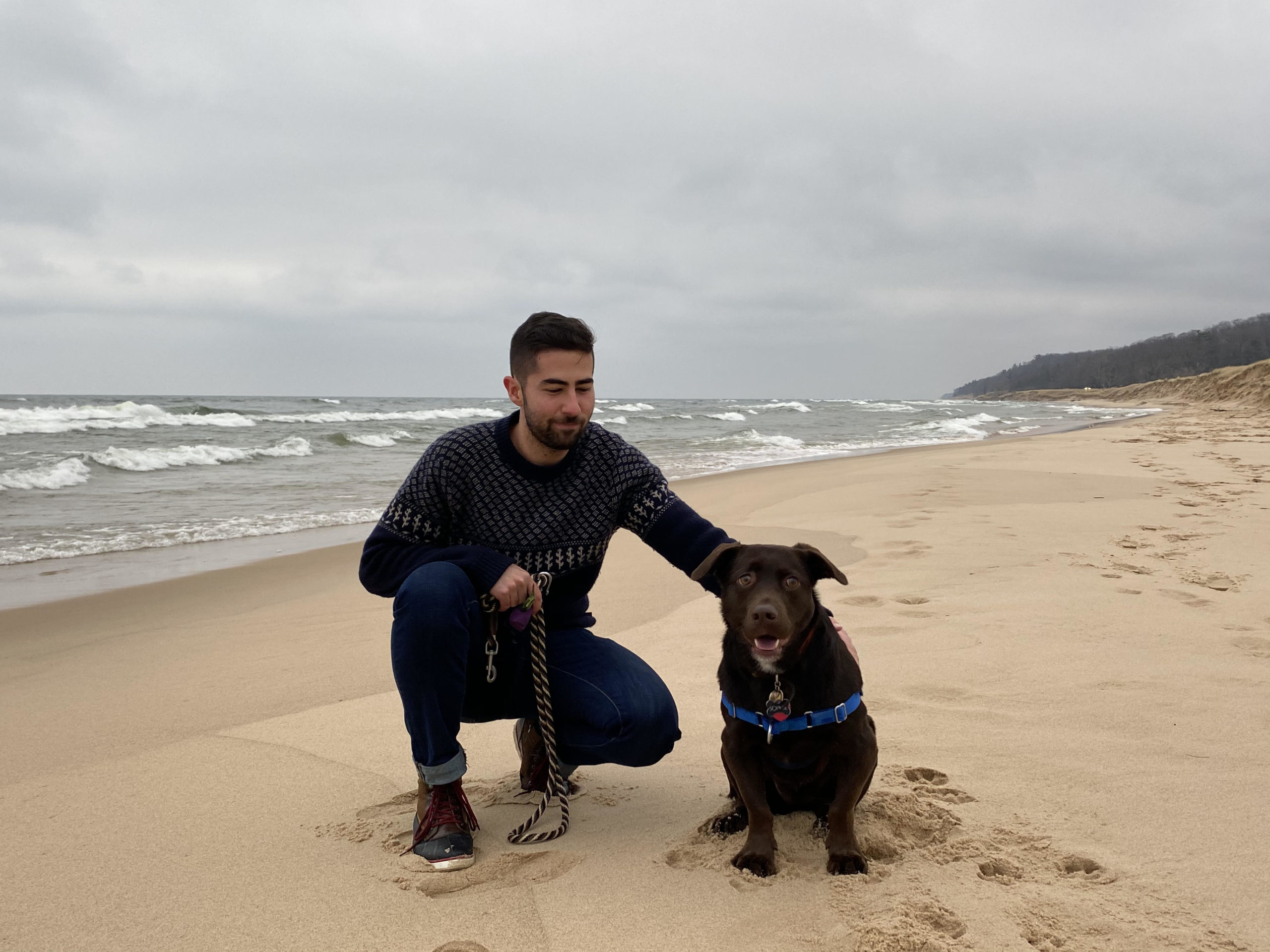 Person and chocolate lab on sandy beach